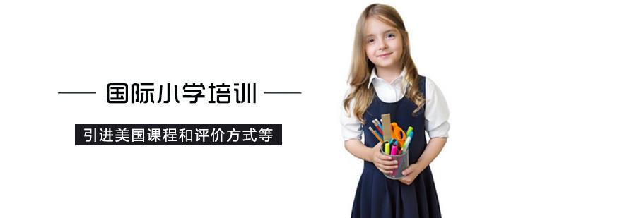 国际小学培训