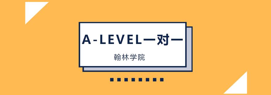 北京A-LEVEL一對一培訓班,北京A-LEVEL一對一培訓機構