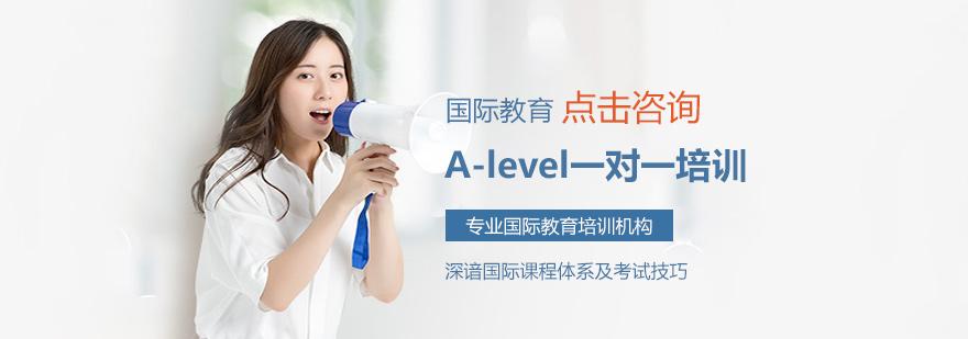 A-level一对一培训