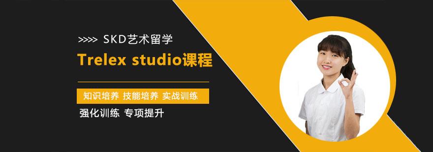 武汉Trelex studio课程