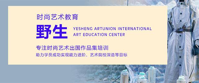 北京野生國際藝術教育