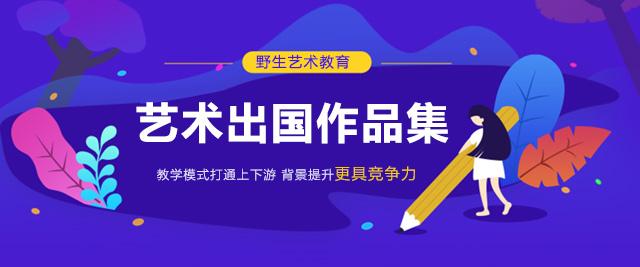上海野生國際藝術中心