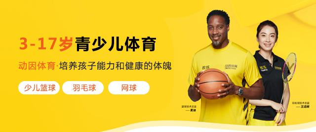 北京動因體育