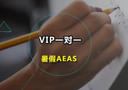 广州AEAS培训-暑假AEAS-VIP一对一