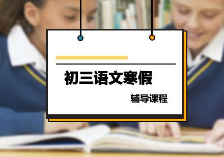 初三語文輔導,語文寒假培訓課程