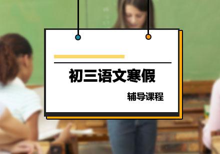 初三數學輔導,數學寒假培訓課程