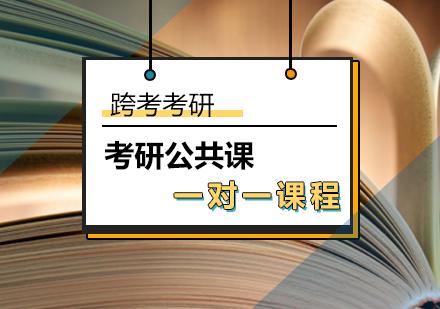 北京考研公共課培訓-考研公共課一對一輔導課程