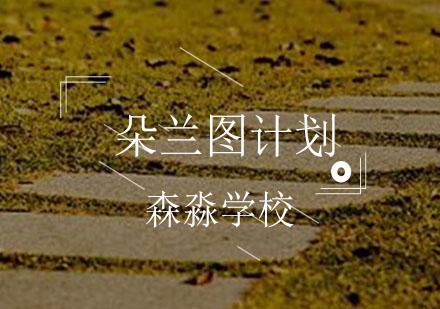 朵蘭圖計劃_祝你登頂世界藝術殿堂_重慶森淼學校