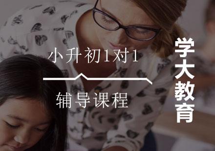 上海小升初培訓-小升初1對1輔導課程