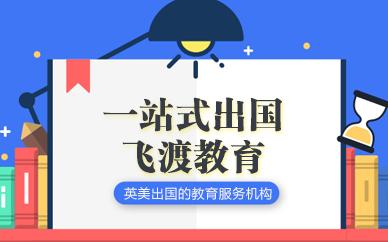 武汉飞渡教育