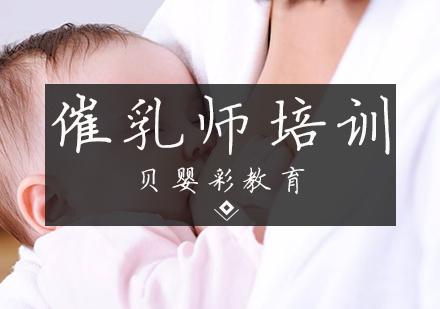 天津按摩催乳培訓-催乳師培訓課程