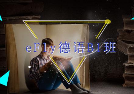 福州德語培訓-eFly德語B1班