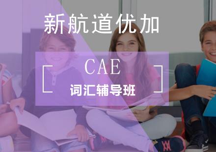 北京劍橋英語培訓-CAE詞匯輔導班