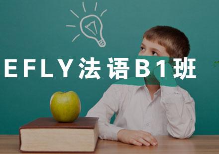福州法語培訓-eFly法語B1班