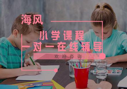 福州小學輔導培訓-小學課程一對一在線輔導