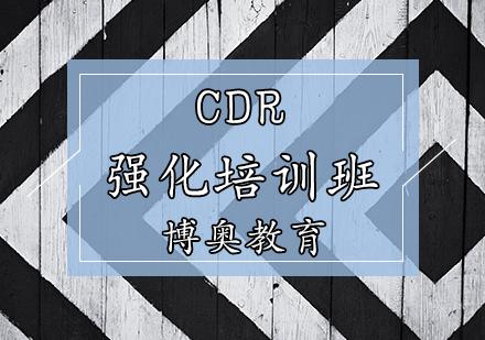 天津博奧教育_CDR培訓班