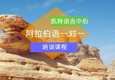 北京阿拉伯語培訓-阿拉伯語一對一課程