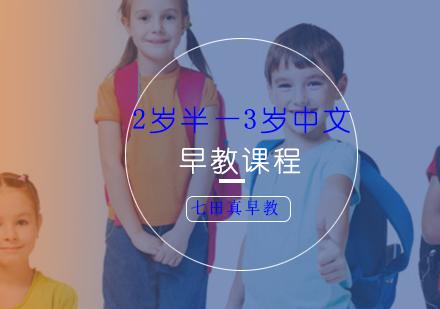 上海早教培訓-2歲半—3歲中文早教課程