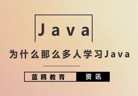为什么那么多人学习Java