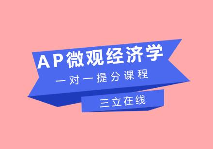 福州AP培訓-AP微觀經濟學一對一提分課程