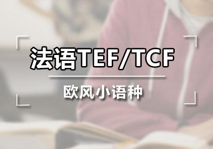 廣州法語培訓-法語TEF/TCF課程