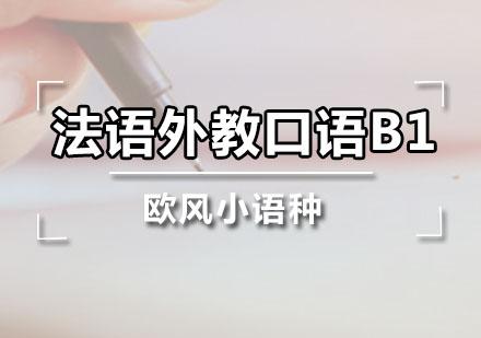 廣州法語培訓-法語外教口語B1課程