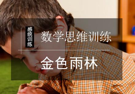 北京邏輯思維培訓-數學思維訓練課程