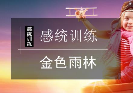 北京感統訓練培訓-感統訓練課程