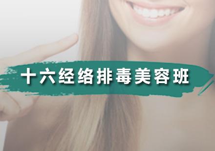 广州美容师培训-十六经络排毒美容班