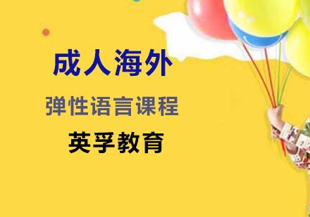 上海國際游學培訓-成人海外彈性語言課程