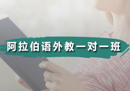 廣州藍天外語_阿拉伯語外教一對一班