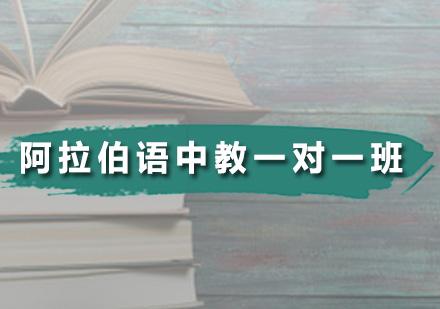 广州阿拉伯语培训-阿拉伯语中教一对一班