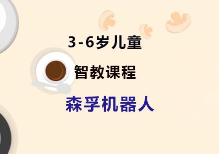 上海機器人培訓-3-6歲兒童智教課程