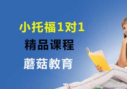 上海小托福培訓-小托福1對1精品課程