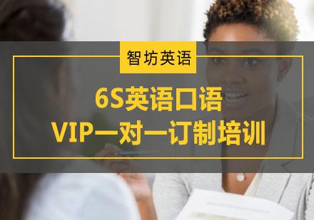 6S英語口語VIP一對一訂制培訓