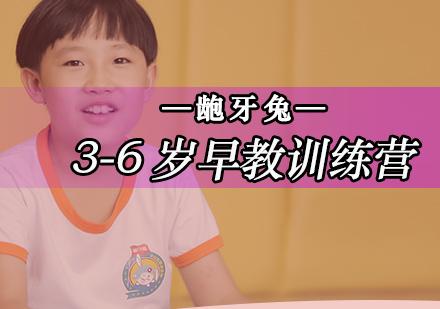 北京兒童早教培訓-3-6歲早教訓練營