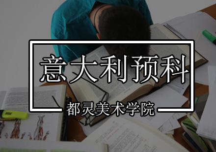 北京意大利留學培訓-都靈美術學院