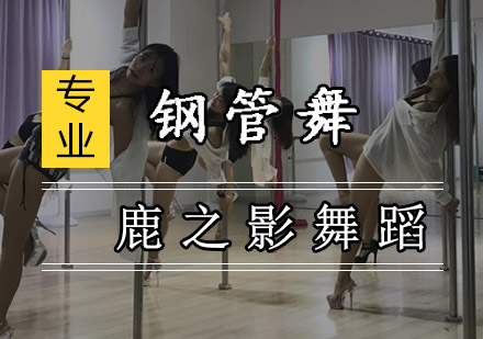 重慶舞蹈培訓-鋼管舞培訓課程