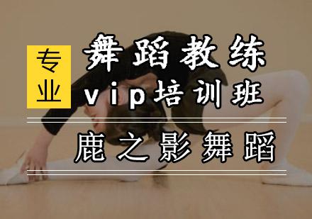 重慶舞蹈培訓-舞蹈教練vip培訓班