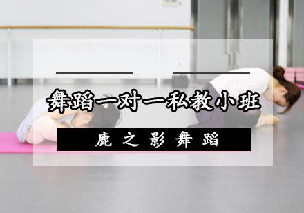 重慶舞蹈培訓-舞蹈一對一私教小班