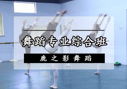 重慶舞蹈培訓-舞蹈專業綜合班