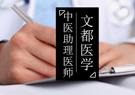 北京中醫醫師培訓-中醫執業助理醫師考試