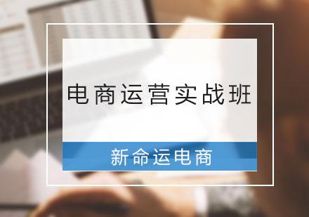 广州电商培训-电商运营实战班