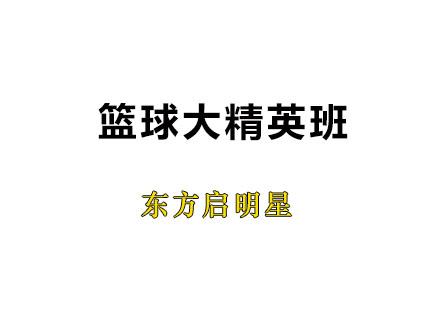 广州体育培训-篮球大精英班