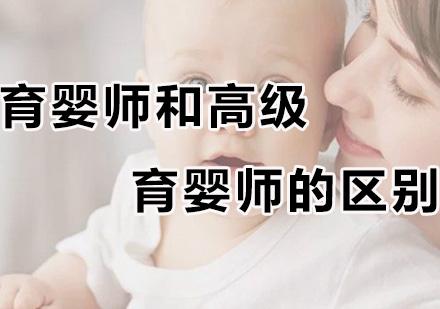 育嬰師和高級育嬰師的區別