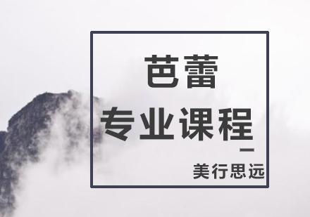 上海藝術留學培訓-芭蕾專業培訓
