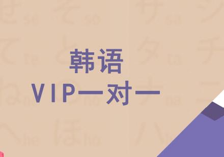 韓語VIP一對一培訓課程