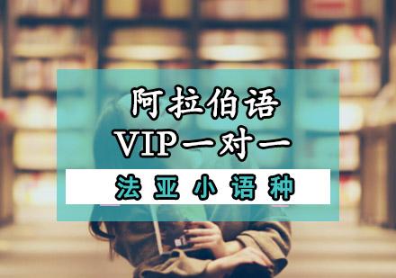 阿拉伯語VIP一對一培訓課程