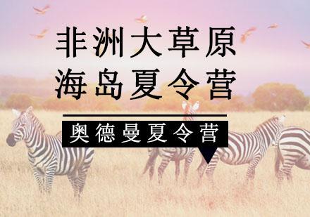 重慶夏令營培訓-非洲大草原+海島夏令營