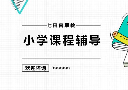 广州小学辅导培训-小学课程辅导